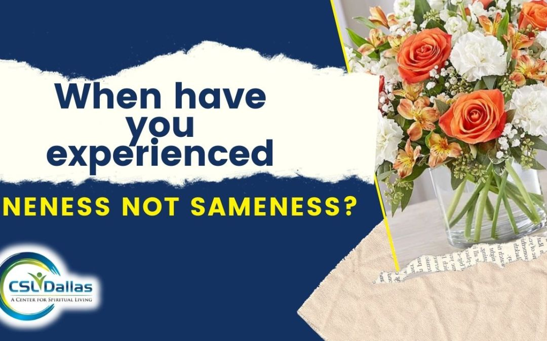 When have you experienced Oneness not Sameness?
