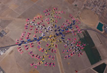 Setting a new world record for an all-female skydiving formation, 181 women from 31 countries freefall over Perris Skydive, Perris, Calif., Sept. 27, on the final day of the week-long Jump for the Cause 2009. Courtesy photo
