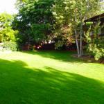Gladstone Backyard 2