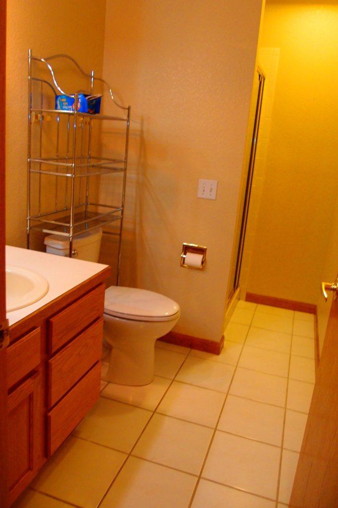 Gladstone basement bath