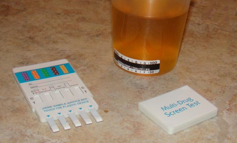 Drug test sample