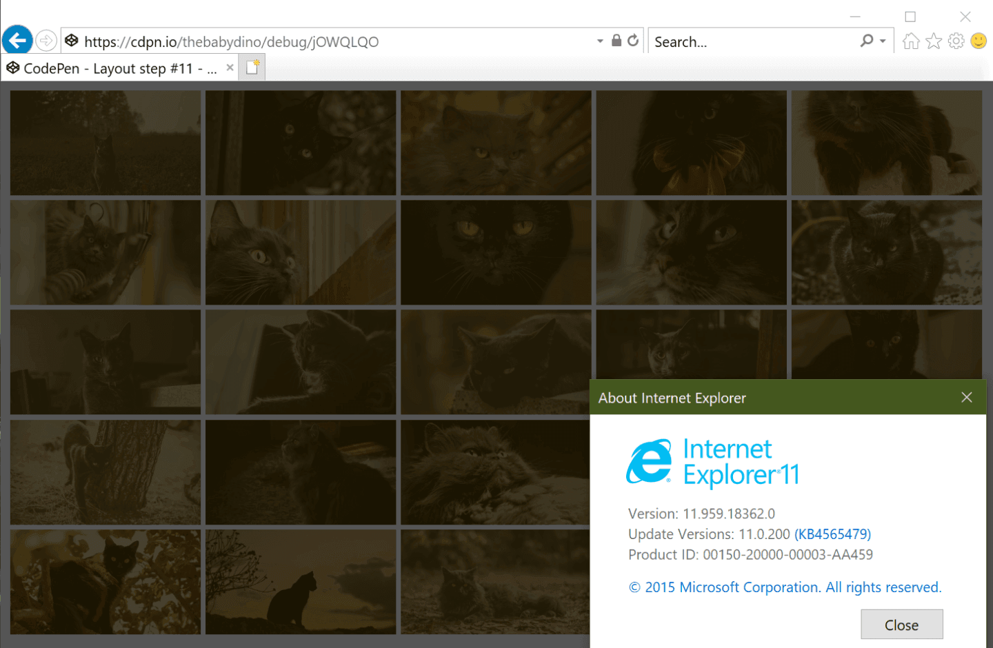 Screenshot showing the IE grid.