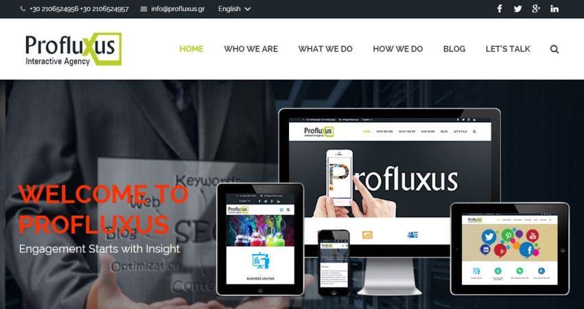 Profluxus Interactive Agency