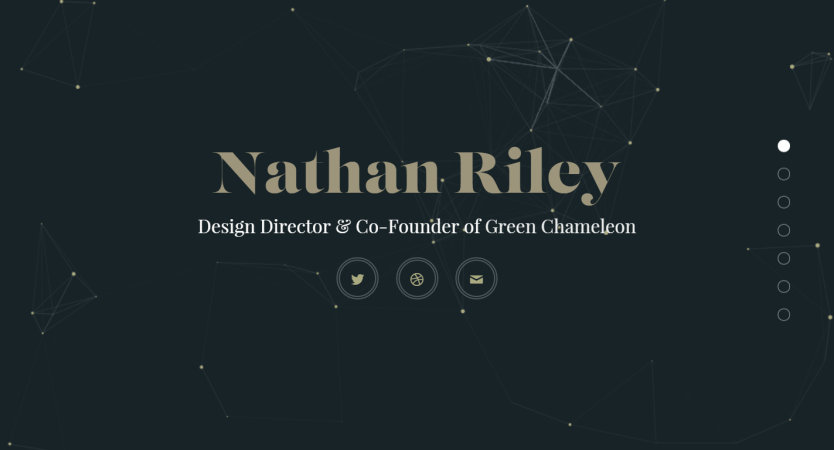 Nathan Riley Portfolio