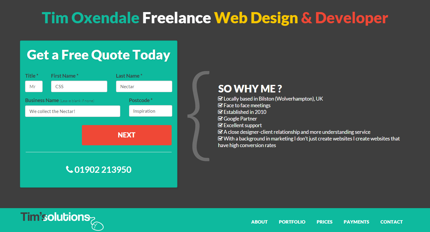 Tim Solutions Freelance Web Designer and Developer
