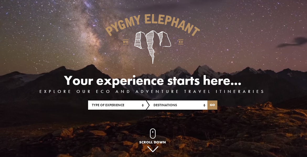 Pygmy Elephant Travel Agency