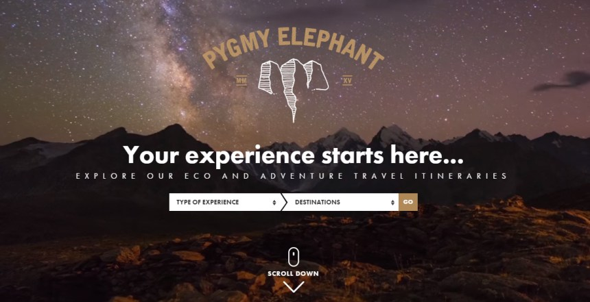 Pygmy Elephant Travel Agency