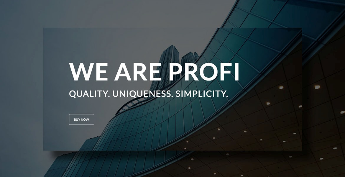 Profi WP – Business and Professional WordPress theme