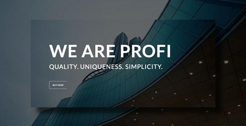 Profi WP – Business and Professional WordPress theme