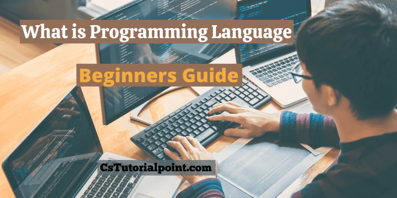 What is a Programming Language? [Beginners Guide 2021]