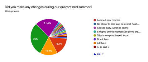 Google survey answers about changes made by students pictured in a graph.