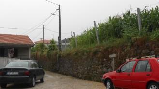 The track starts at Noninha