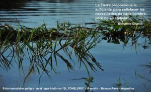 tonelero1