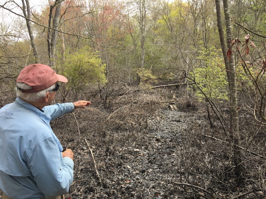 George James leads a tour of the Ames Preserve in Old Lyme
