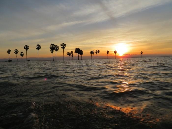 zon gaat onder in Tempemeer. Bomen op horizon
