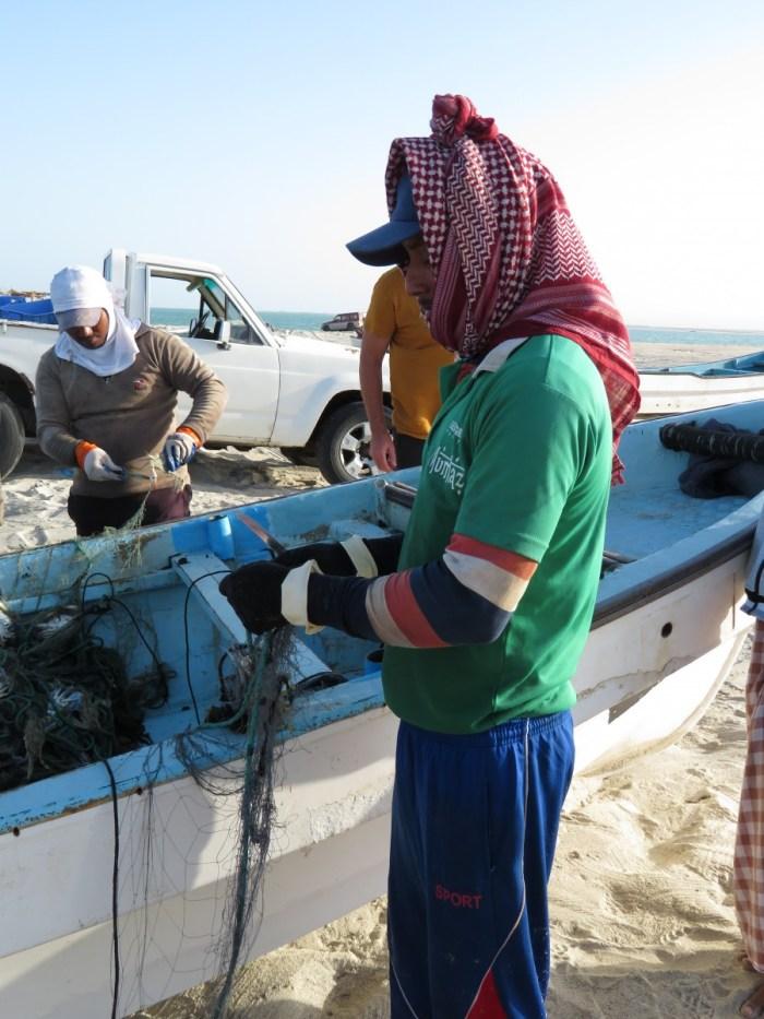visser op Masirah Island