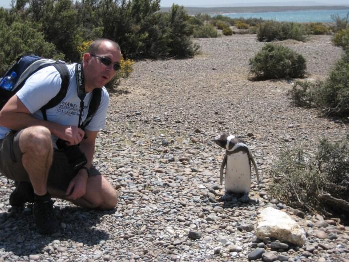eric met pinguin