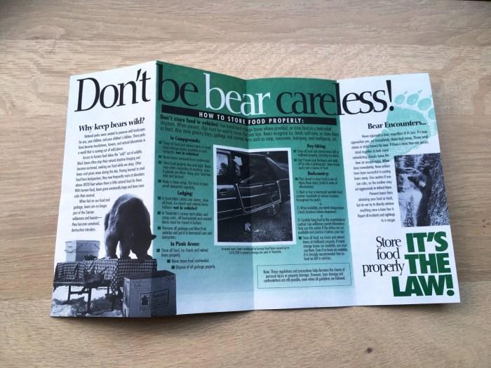veilig kamperen met beren