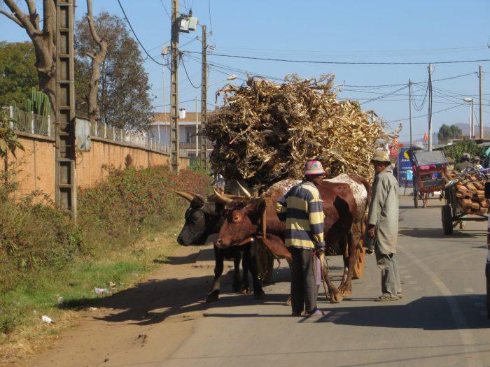 volgeladen wagen Madagaskar