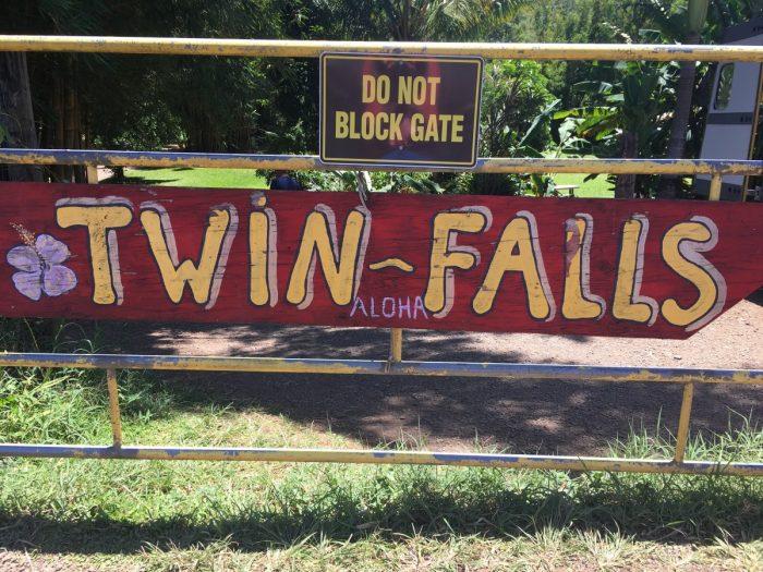bordje twin falls