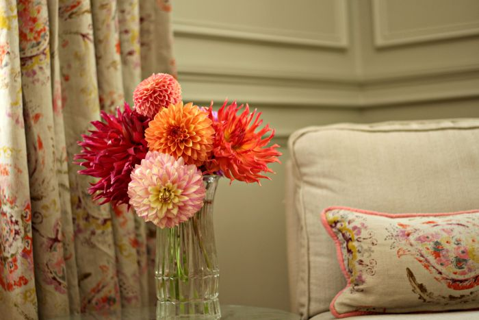 Dahlias in livingroom