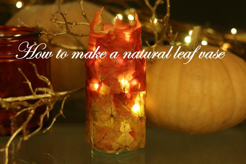 DIY Ombre Leaf Vase