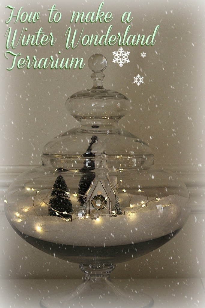 How to make a Christmas terrarium