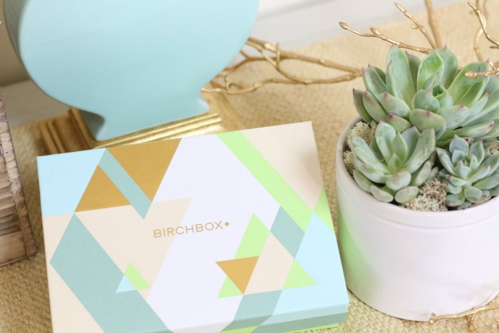 Birchbox with succulents on table
