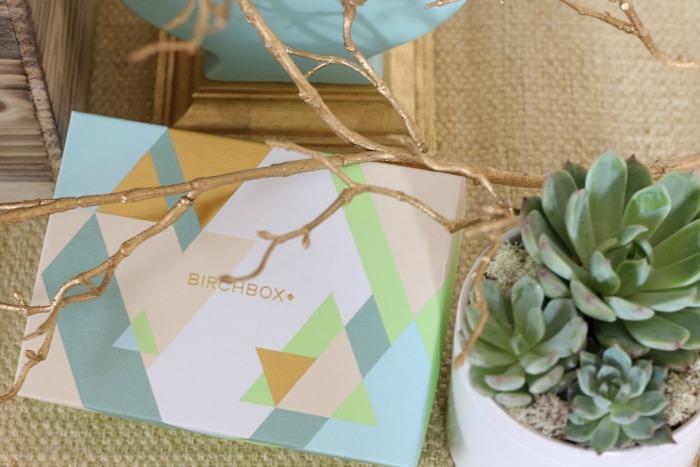Birchbox with succulents