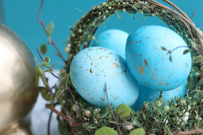 Speckled Eggs Close up