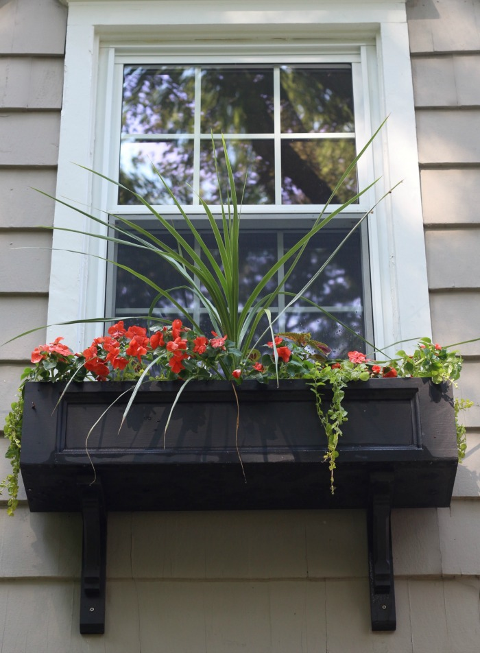 Window Box Exterior