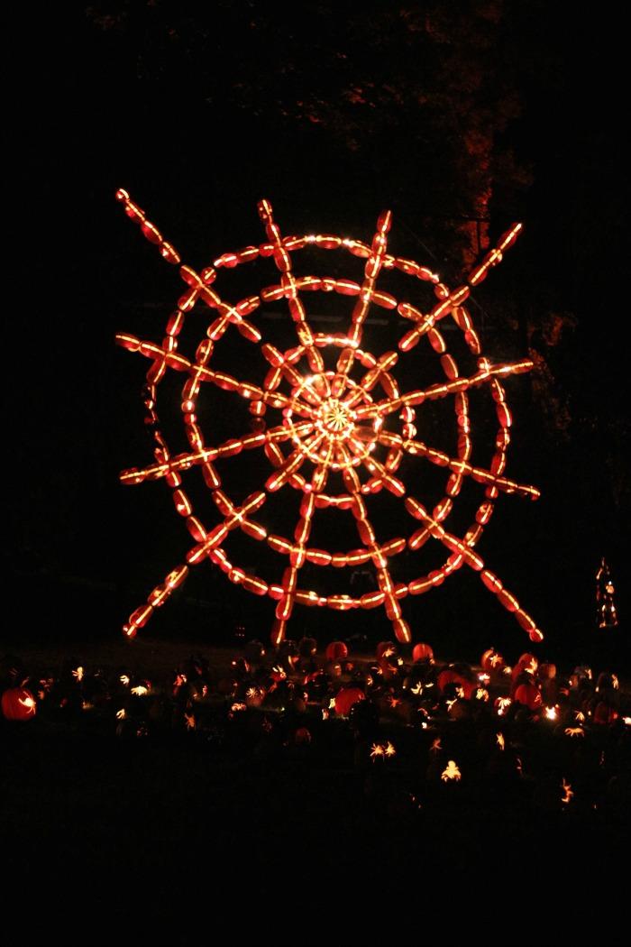 pumpkin-spider-web