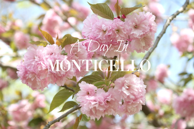 A Day In Monticello