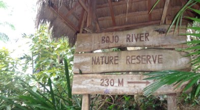 The Bojo River ecotour allowed participants to learn about the local environment