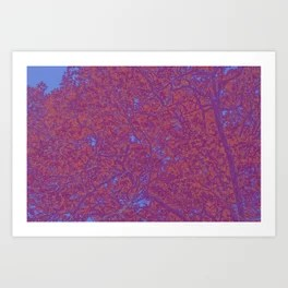 Quirky Quercus Art Print