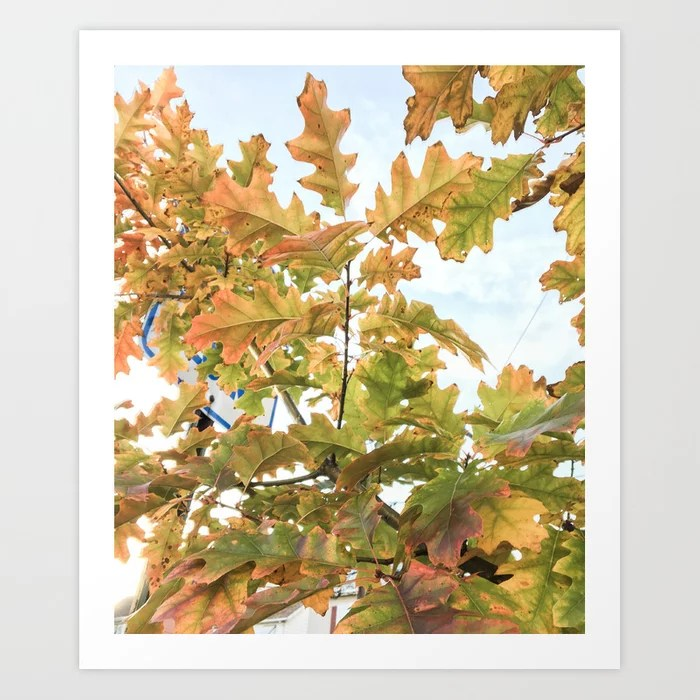 """Bright Autumn Glow"" Art Print 