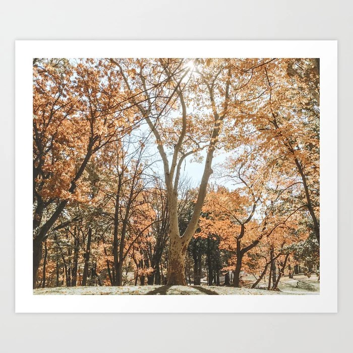 """Autumn Scenes"" Art Print | Dreamery Events || Society6"