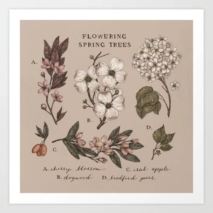 Sunday's Society6 | Outdoor flowering spring tree flowers art print