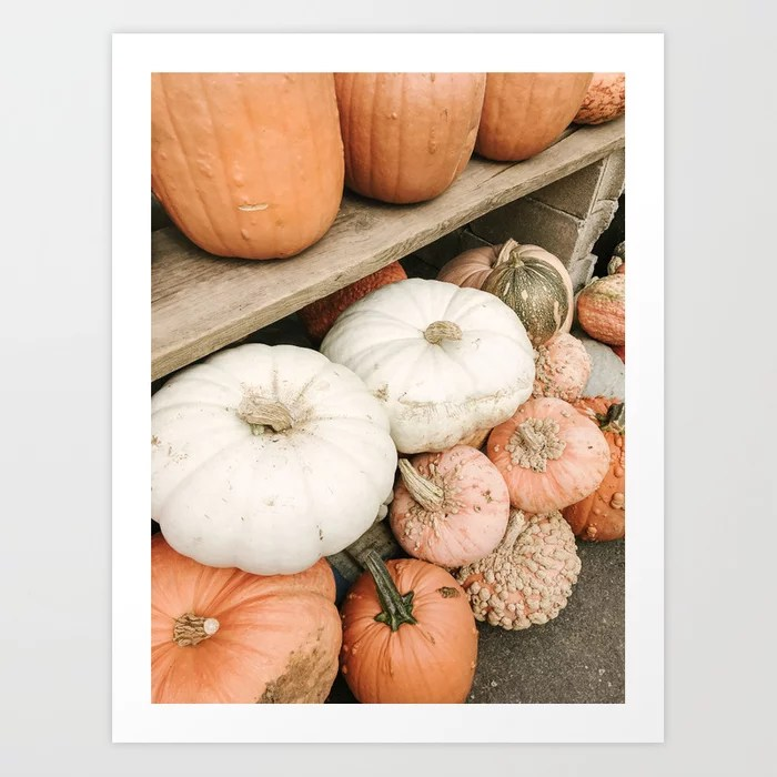 Muted Gourds Art Print