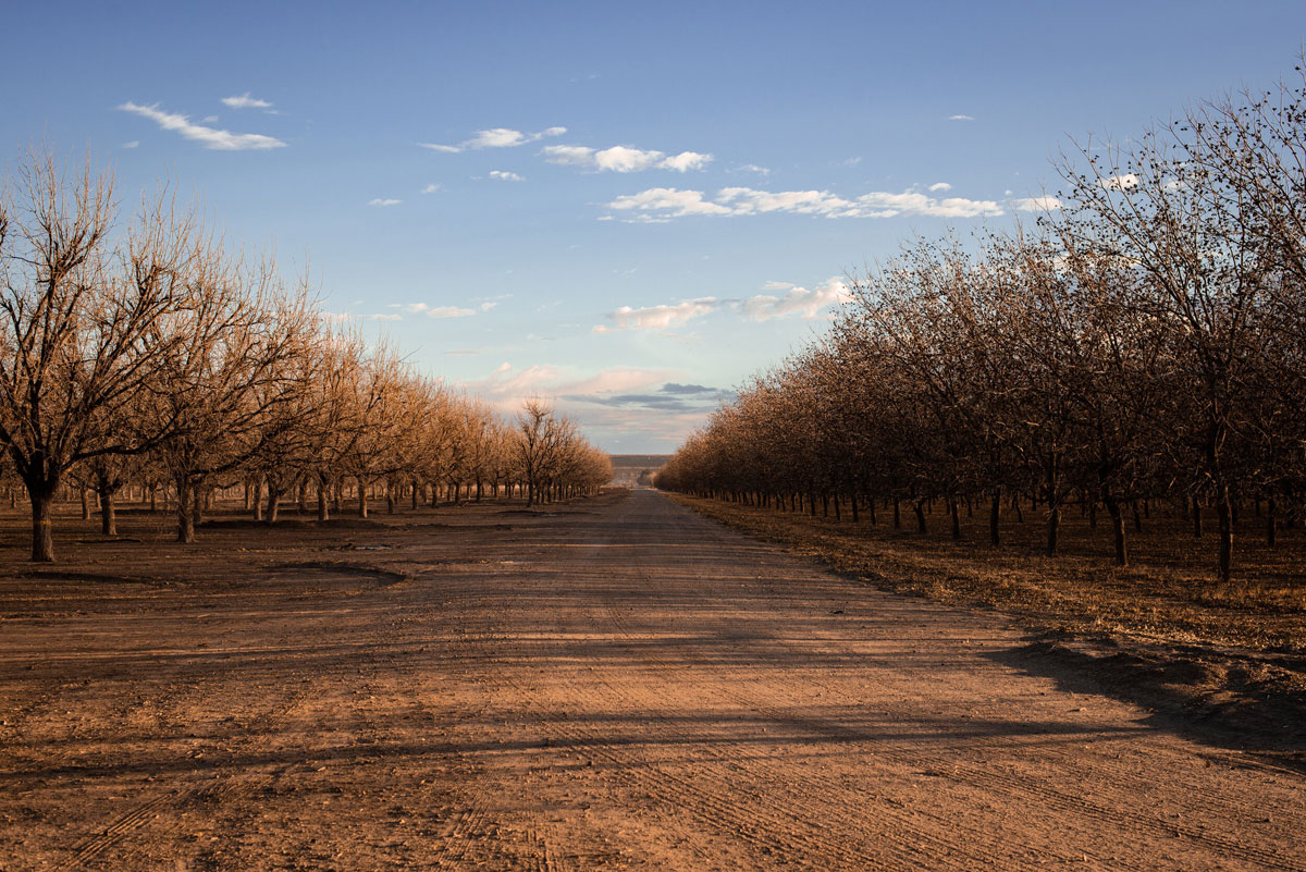 Image of a road near the Texas-New Mexico border (Dean Pagani photo / All rights reserved)