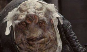 Vogon's are not bogons, but look like them.