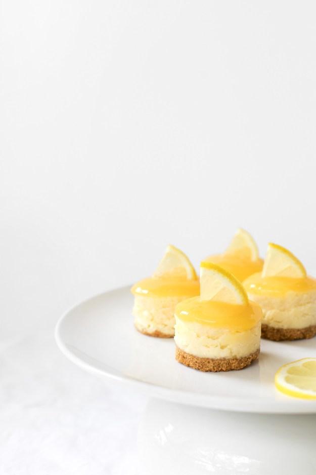 Solar Eclipse Lemon Curd Cheesecake Bites