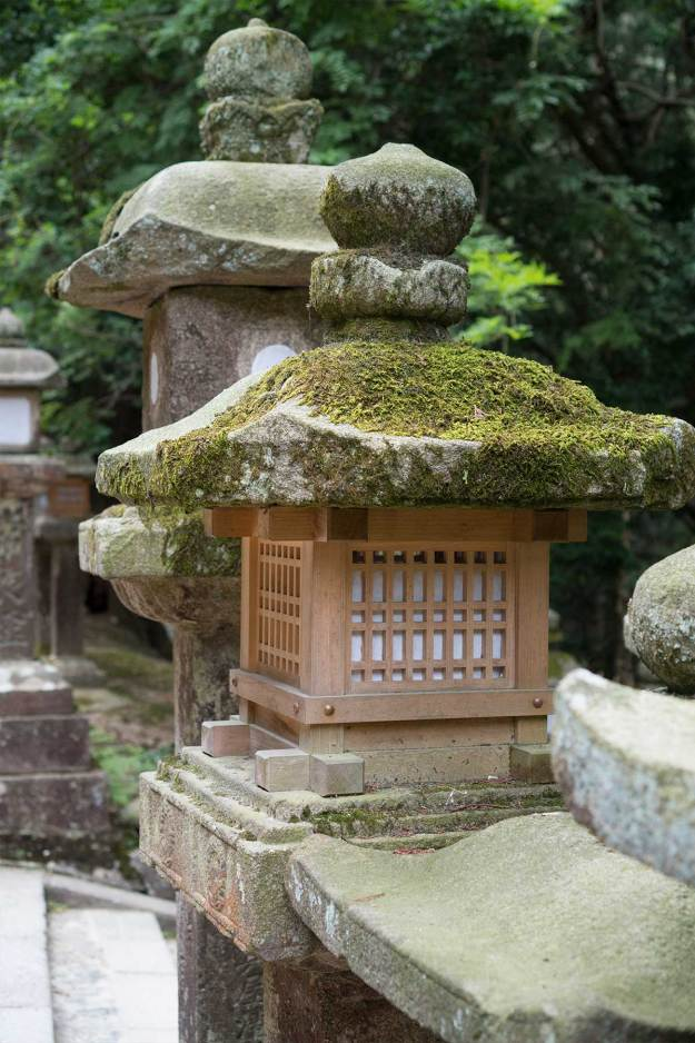 Japan Summer Honeymoon Travel Guide Intro