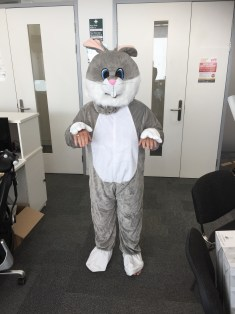 Karen Bunny 2