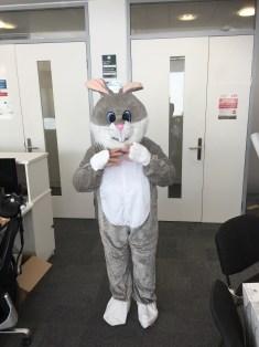 Karen Bunny