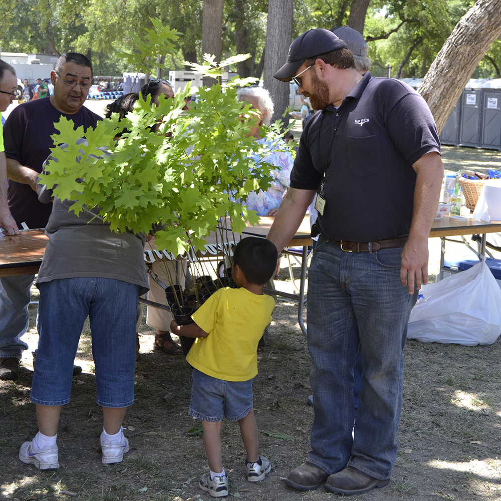 A Little Volunteer helps Craig Fox, City of Fort Worth Natural Scientist Supervisor, prepare red oak seedlings for the tree give a way - 1000