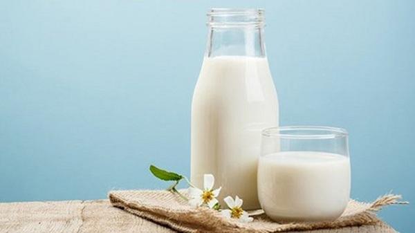 Sữa tươi tốt cho mẹ sau sinh