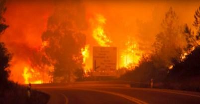 <p>Incendio en Pedrógrao Grande, en Portugal, en junio de 2017.</p>