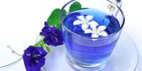 青いお茶・バタフライピー