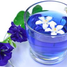 青いお茶!?きれいなブルーと話題のバタフライピーは美容・健康・ダイエットにおすすめ!